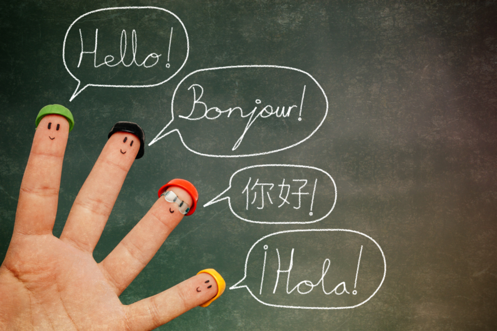 Learning-a New-Language Vogue Traveller