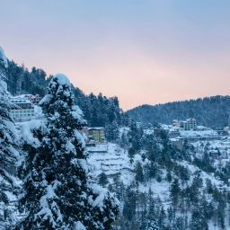 shimla places; shimla places to visit in december; shimla places photos; shimla places to visit in may; shimla tourism; shimla tourism place; shimla tourism package; shimla tourism hotel;