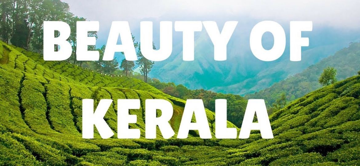 Kerala The Paradise On Earth